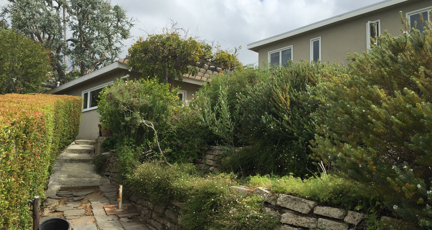 Before picture of back yard renovation in Pacific Palisades