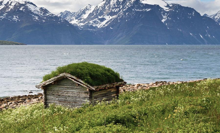 grass-roof-on-Shed_Lyngen_fjord.jpg