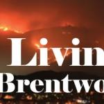 Kurt Krueger Expert Contributor, Living Brentwood, August 2020